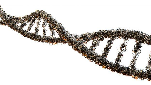 Genetik for selvmordsforsøg hos personer med og uden psykiske sygdomme
